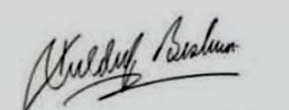 Bhavya Bishnoi Signature