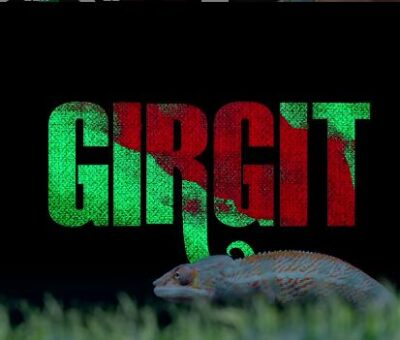 Girgit